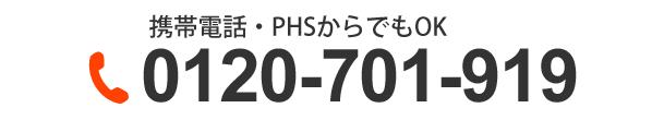 0120-701-919